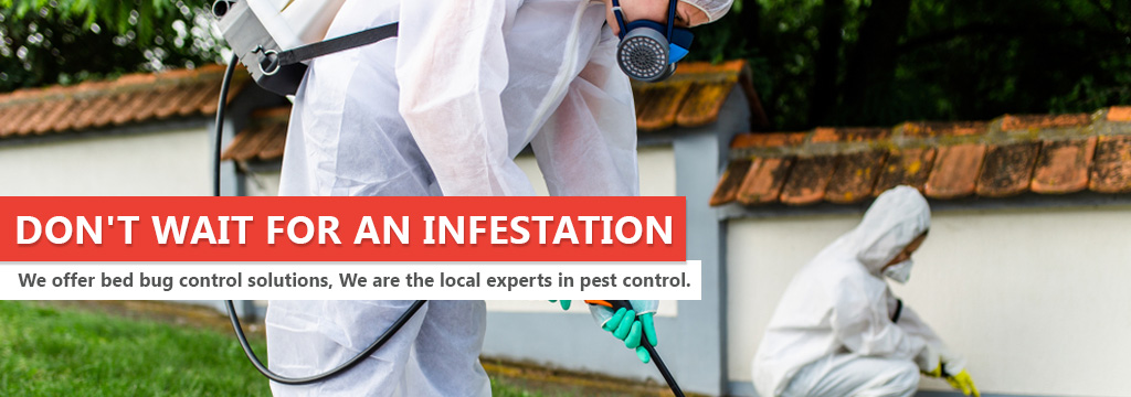 Honest And Reliable Pest Control Paterson NJ