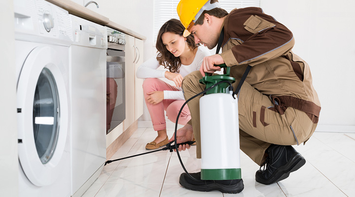 Dependable And Reliable Pest Control Moapa NV